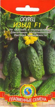 Насіння огірків Огірок Изыд F1 12 штук (Плазмові насіння)