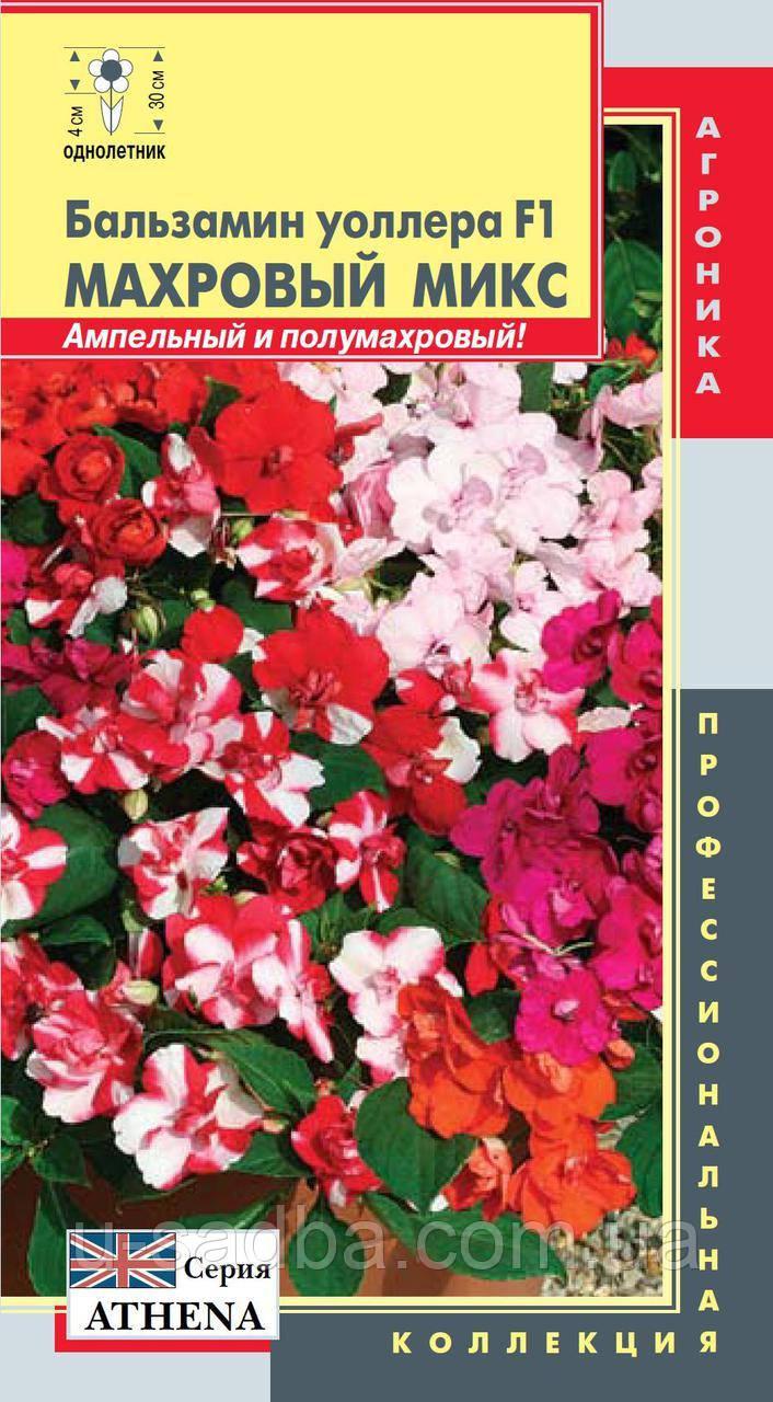Насіння квітів Бальзамін Уоллера F1 Махровий Мікс 5 штук суміш (Плазмові насіння)