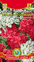 Насіння квітів Флокс махровий Полуниця з вершками 6 шт суміш (Плазмові насіння)