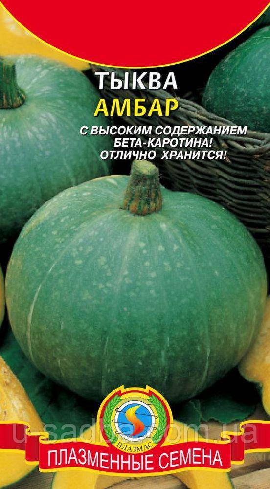 Семена тыквы Тыква Амбар 1 г (Плазменные семена)