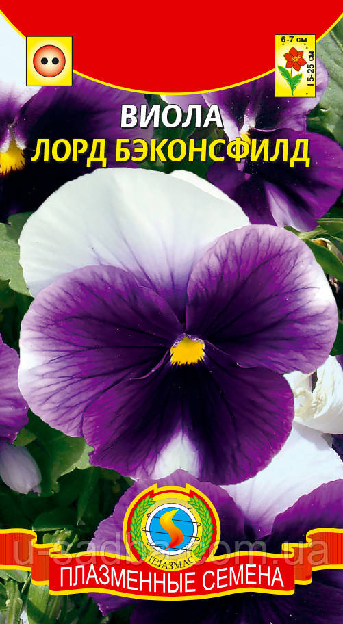 Виола Лорд Бэконсфилд 0,1 г (Плазменные семена)