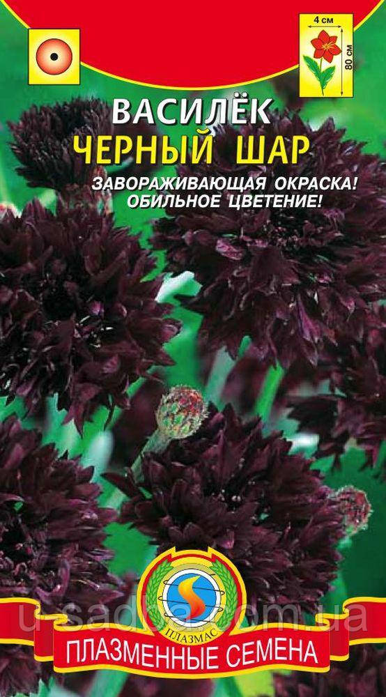 Насіння квітів Волошка Чорний Куля 0,5 г чорні (Плазмові насіння)