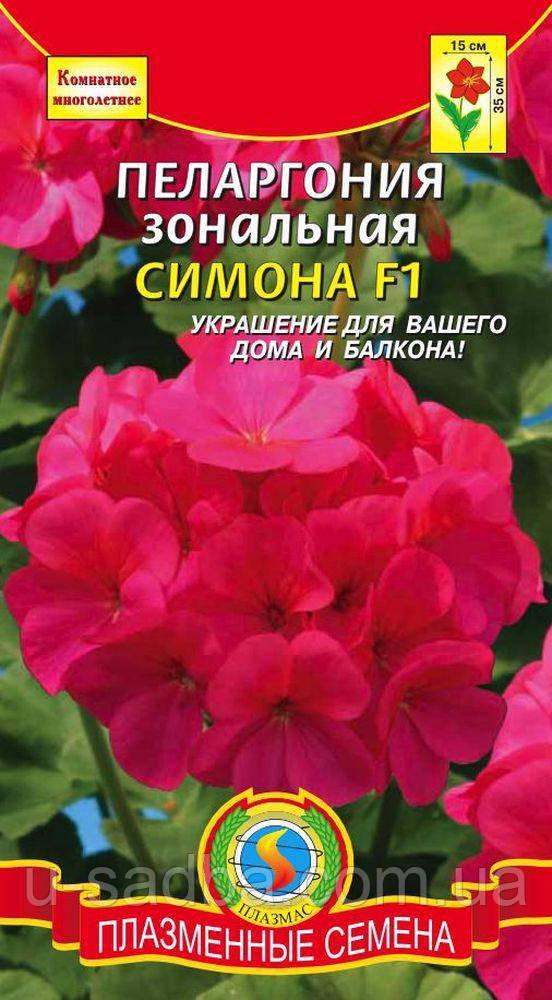 Пеларгония зональная Симона F1 3 шт (Плазменные семена)