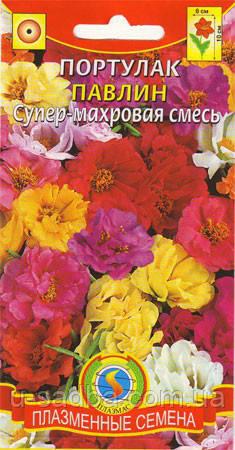 Насіння квітів Портулак супер-махровий Павич 0,1 г суміш (Плазмові насіння)