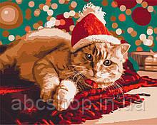 Санта котик