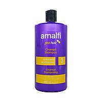 Шампунь для сухих волос увлажняющий Amalfi, 900 ml