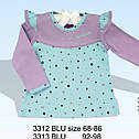 Блуза с длинным рукавом Гусеничка (Nicol, Польша), фото 2