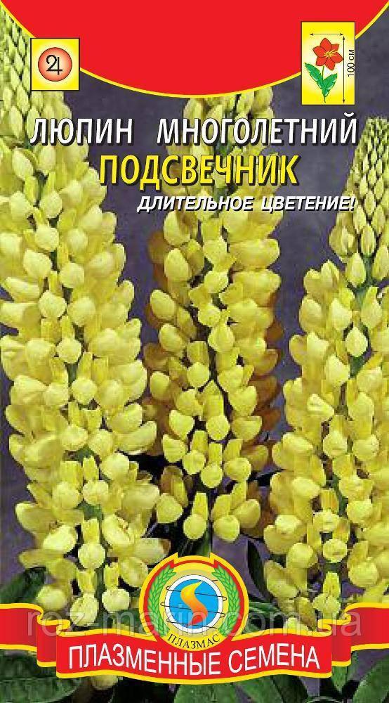 Насіння квітів Люпин багаторічний Свічник 0,3 г жовті (Плазмові насіння)