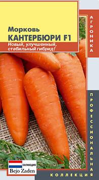 Насіння моркви Морква Кантербюри F1 140 штук (Плазмові насіння)