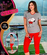 Комплект домашний лосины и футболка Турция  Night Angel № 9706