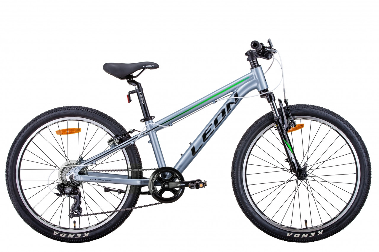 """Велосипед 24"""" Leon JUNIOR AM 2021 (сріблясто-чорний з зеленим)"""