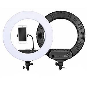 Кольцевая Led лампа RL-18 Soft Ring 45см, фото 2