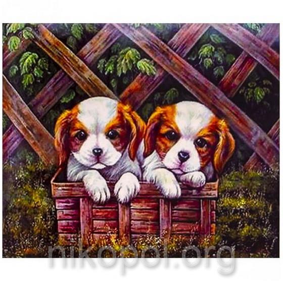 """Картина по номерам """"Два щенка"""" на полотне, большая 400*500мм №30333"""