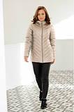 Куртка стеганная Арабелла, размеры 44 - 52. Куртки женские Nui very, фото 9