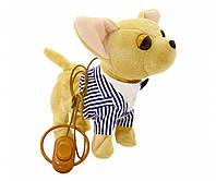 """Собачка на поводке CL1352 (В полосатой рубашке) """"Поющий щенок"""""""