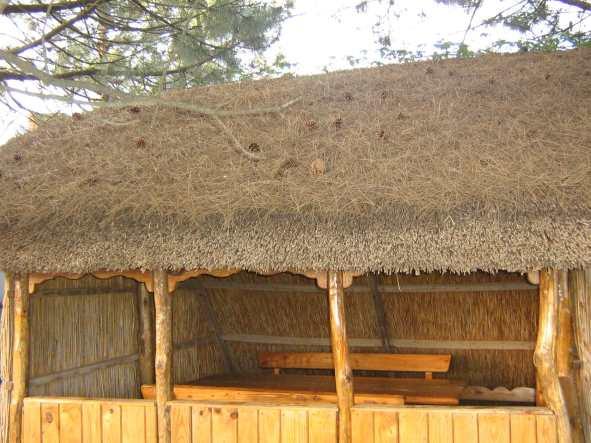 крыша из камыша, фото_1