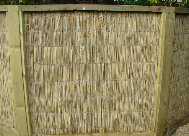 забор из камыша, фото_1