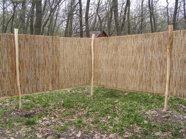 забор из камыша, фото_5