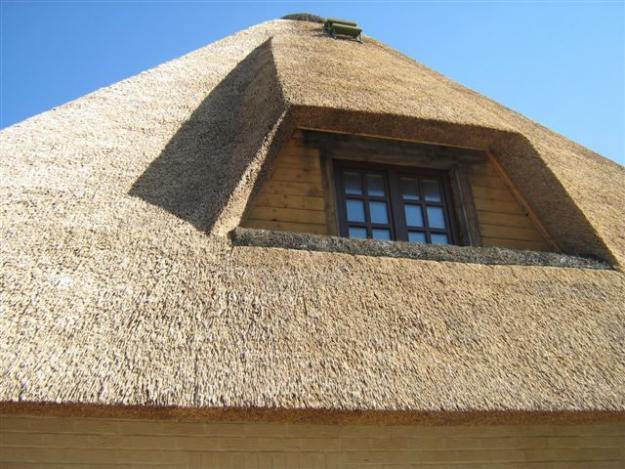 крыша из камышовых материалов, фото_2