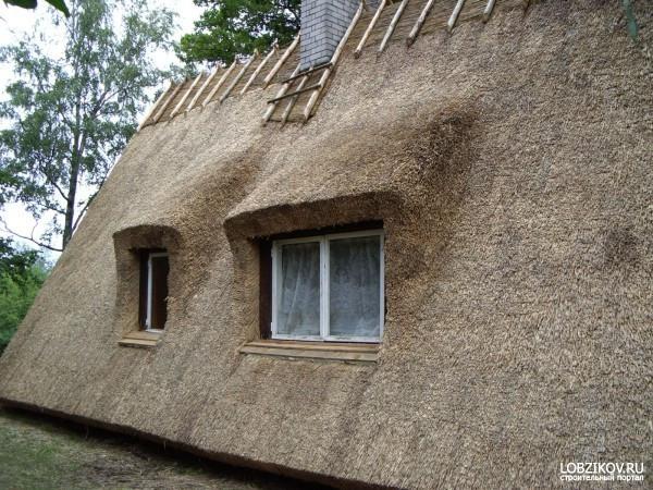 крыша из камышовых материалов, фото_4