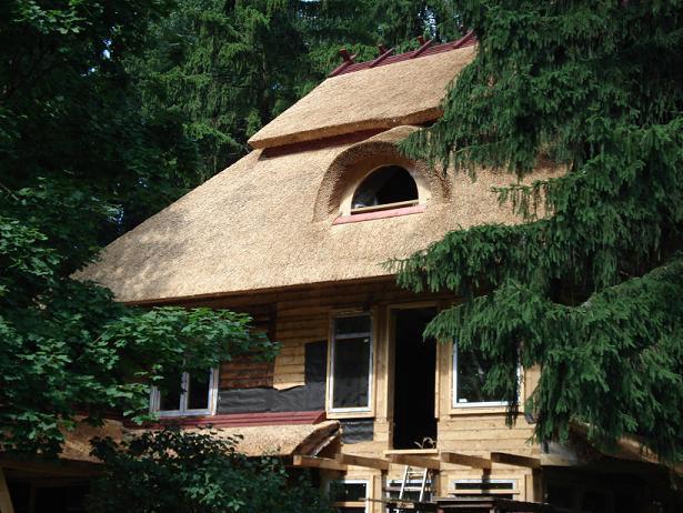 крыша из камышовых материалов, фото_6