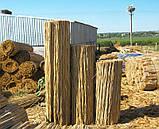 Камышовые маты в рулонах, размер 1,2 x 3 м, фото 3
