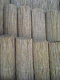 Камышовая рогожка, размер 1,8 х 6 м, фото 2