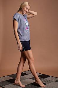 "Стильна жіноча бавовняна смугаста піжама з шортиками ""Trend cool cat"""
