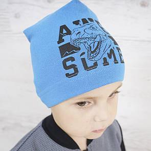 """Модна тепла шапка для хлопчика """"Діно"""""""
