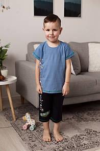 """Стильний комплект c шортиками шорти для хлопчика """"Cricket"""""""