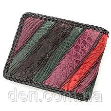 Бумажник мужской CROCODILE LEATHER из натуральной кожи крокодила Разноцветный, Разноцветный, фото 2