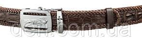 Ремень CROCODILE LEATHER 18599 из натуральной кожи крокодила Коричневый, Коричневый, фото 2