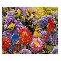 """Картина розмальовка по номерах """"Яскраві пташки і квіти"""", 40х50см. №30404"""