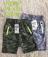 Трикотажные шорты для мальчиков S&D оптом, 98-128 рр. Артикул: CH5607
