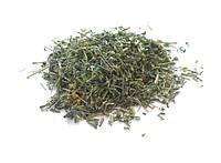 Трава Руты душистой (Herba Ruta graveolens), 100 грамм