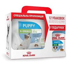 Royal Canin X-Small Puppy 3кг +12 паучей в подарунок для цуценят мініатюрних розмірів