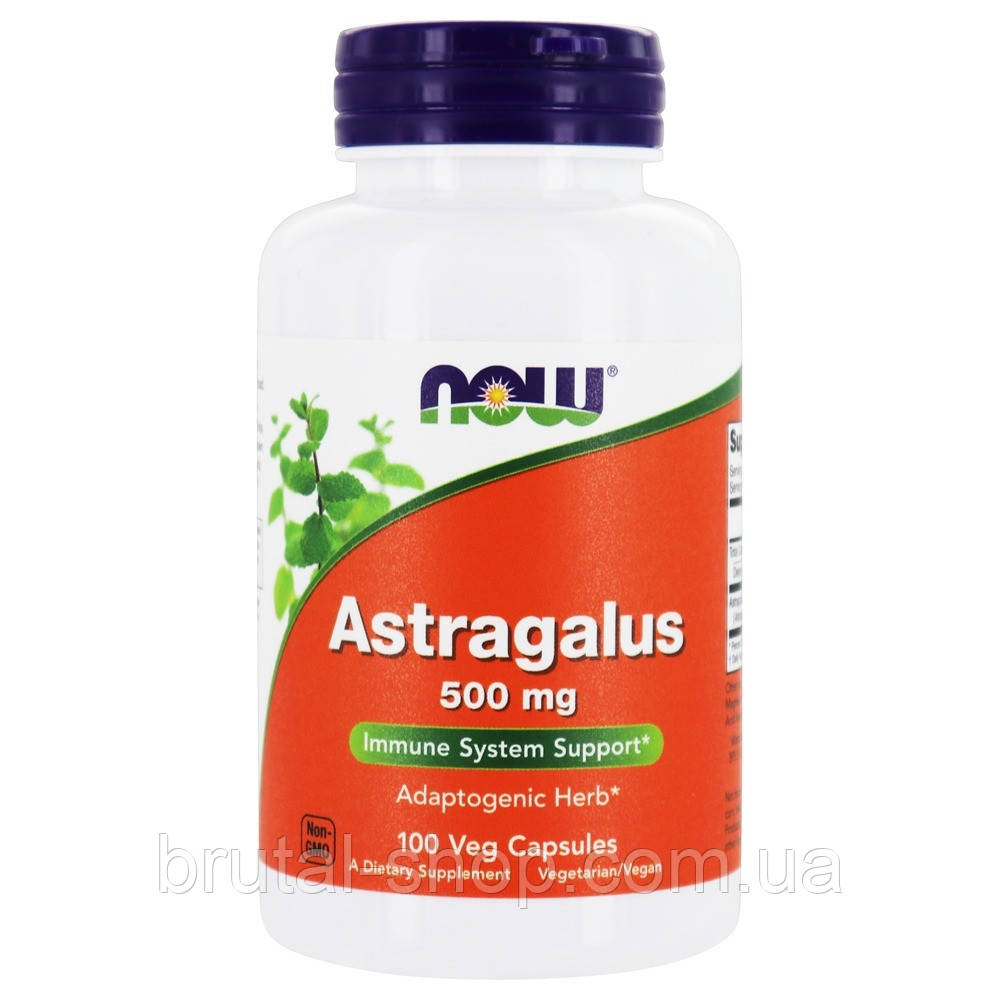Астрагал, Now Foods Astragalus 500 mg (100 caps)