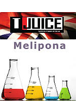 Набор для замеса жидкости T-Juice Melipona 100 мл.