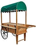 Передвижные декоративные тележки для сада, дачи, загородного участка (Decorative Garden Cart 01), фото 2