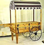 Передвижные декоративные тележки для сада, дачи, загородного участка (Decorative Garden Cart 01), фото 3
