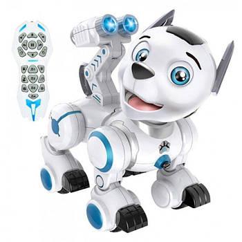 Интерактивный робот Собака K10