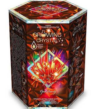 Набор для проведения опытов Растущий кристалл Growing Crystal GRK-01-01