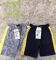 Трикотажні шорти для хлопчиків S&D, 1-5 років. Артикул: CH5604