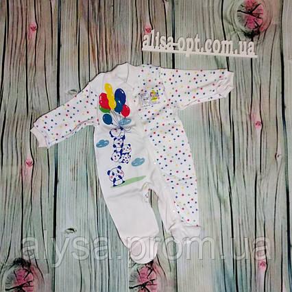 Комбинезон для новорожденного 504-05 Шарик интерлок