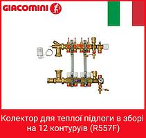 Giacomini Колектор для теплої підлоги в зборі на 12 контуруів (R557F)