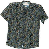 Молодежная модная рубашка, фото 1