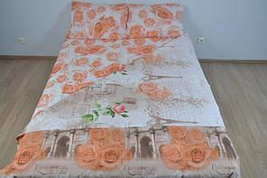 Півтораспальний постільний комплект (молдавська гладь бязь )