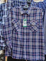 Рубашка мужская норма в клетку весна-лето