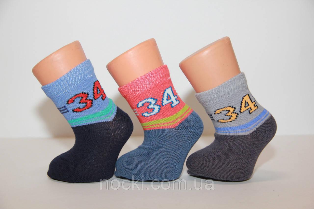 Дитячі шкарпетки середні з бавовни комп'ютерні для малюків Стиль люкс 12-14 682 номер 34