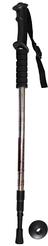 Палки для скандинавской ходьбы, телескопические, трёх секционные, металлик